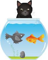 金魚鉢を覗く猫